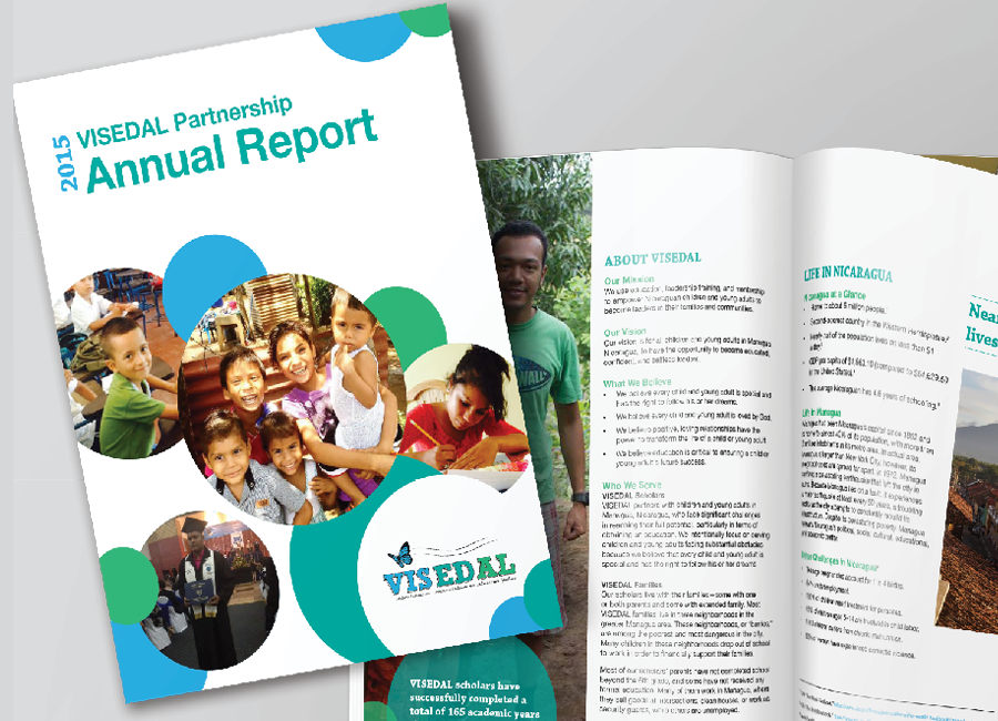 visedal annual report
