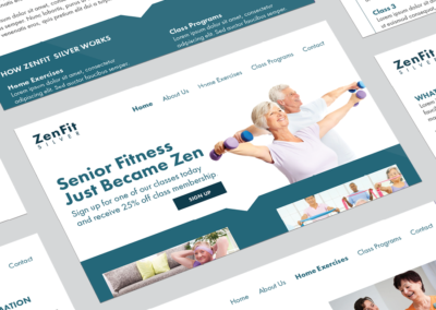 Zenfit Silver Overview